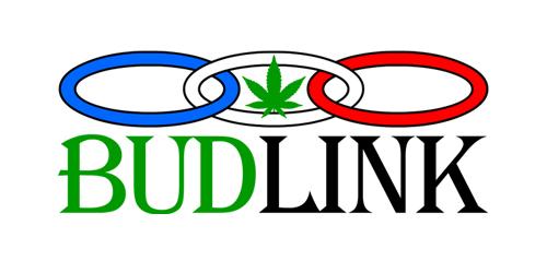 budlink.com Logo