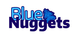 bluenuggets.com Domain Logo