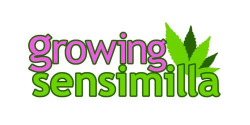 growingsensimilla.com Logo