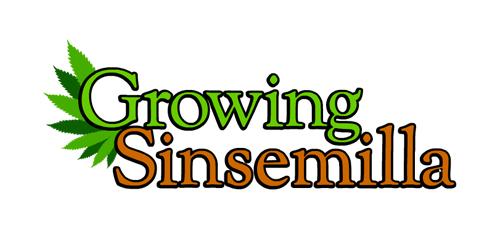 growingsinsemilla.com Logo