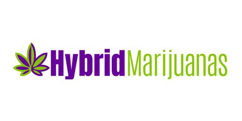 hybridmarijuanas.com Logo