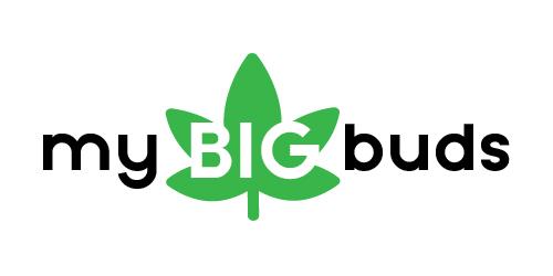 mybigbuds.com Logo